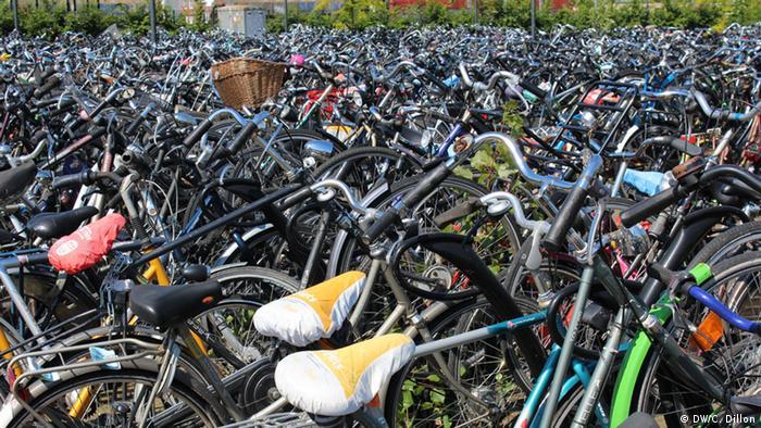 Fahrräder in den Niederlanden