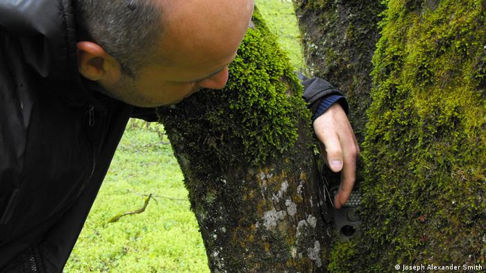 A ranger fits a camera into a tree in Lagodekhi (Photo: Joseph Alexander Smith)
