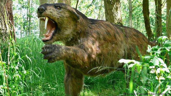Sabre toothed Tiger (Copyright: picture alliance).