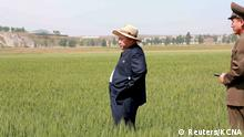 Nordkorea Landwirtschaft Propaganda