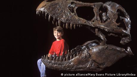 Verhältnis Tyrannosaurus Rex Mensch Symbolbild