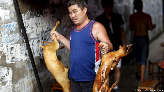Bildergalerie China Hundefleisch