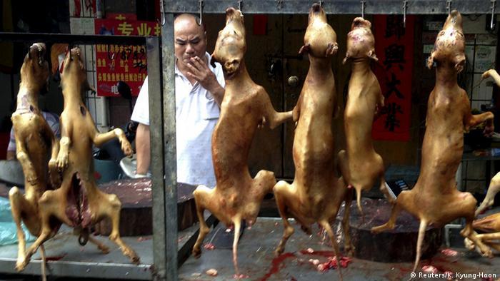 Bildergalerie China Hundefleisch (Reuters/K. Kyung-Hoon)