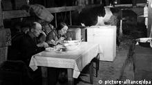 Der Flüchtling E. Rahlf aus Hinterpommern sitzt am 14.09.1950 mit seiner 14jährigen Tochter an einem Tisch in einem Kuhstall in Lasbek bei Oldesloe, in dem er mit seiner Familie lebt, beim Essen.