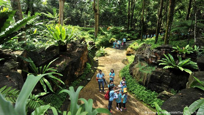 Sinapore's Botanical Garden. (Photo: picture-alliance/ ANN/ The Straits Times)