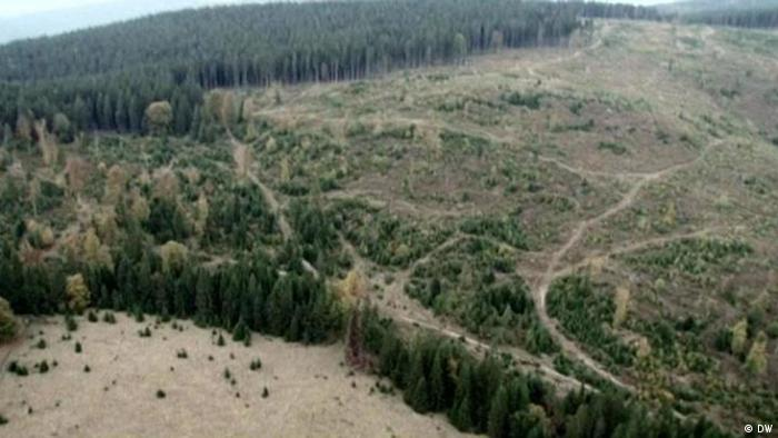 Карпаты в Румынии