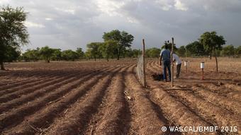 Klimaexperten auf einem Feld (Foto: WASCAL/BMBF 2015)