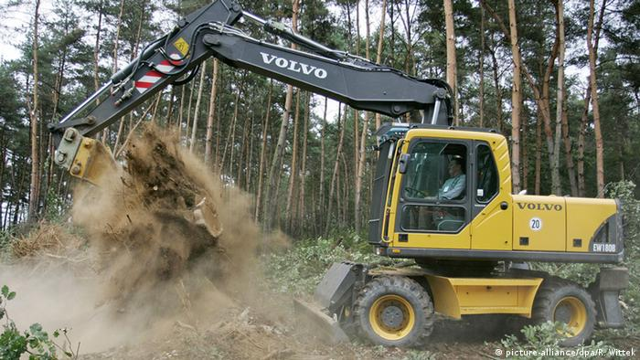 A backhoe removing trees