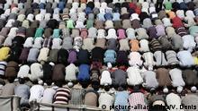 Betende Muslime in Kairo