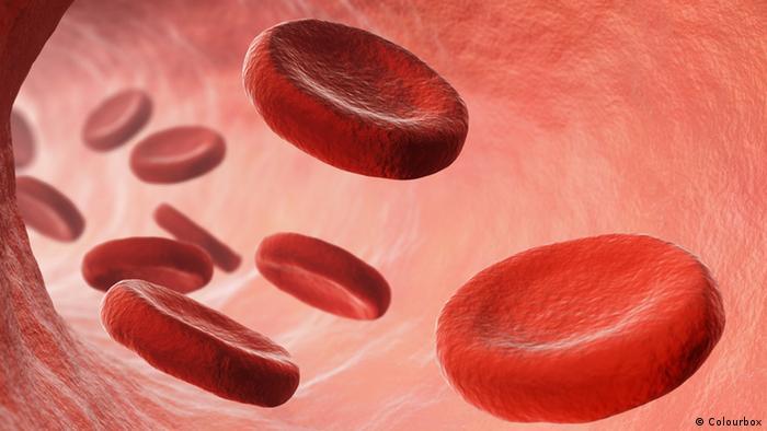 Blutzellen (Colourbox)