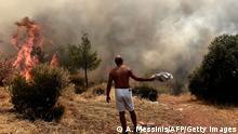 Griechenland Athen Waldbrände