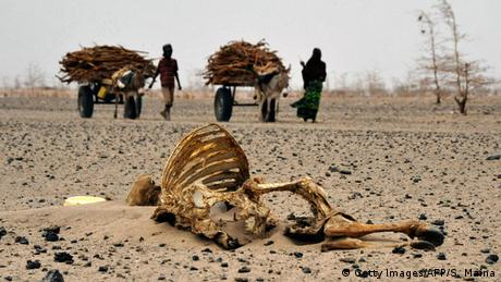 Seca no Quênia