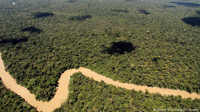 Yasuni National Park aerial shot, river with rainforest (Photo: dpa - Bildfunk)