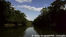 Ecuador Yasuni Nationalpark - Tipuni River