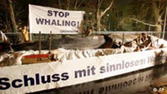 Greenpeace Wal Deutschland Botschaft Japan