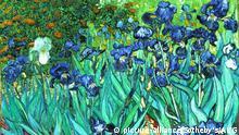 Van Gogh/Iris (Schwertlilien)/1889 Gogh, Vincent van 1853-1890. Iris (Schwertlilien). Saint-Remy, Mai 1889. Oel auf Leinwand, 71 x 93 cm. Sotheby's New York 11. November 1987 (verkauft fuer 30 187 623 Pfund). (c.) Sotheby's/AKG.