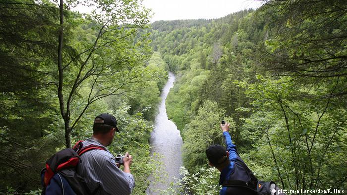 Die Wutachschlucht im Schwarzwald Foto: Rolf Haid, dpa