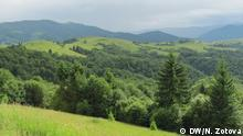 Auf dem Bild sind die Berge Karpaten in der Ukraine zu sehen. Copyright: DW/N. Zotova via Olena Perepadya, DW Ukrainisch