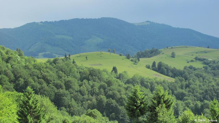 У Карпатах хочуть побудувати новий гірськолижний курорт Свидовець