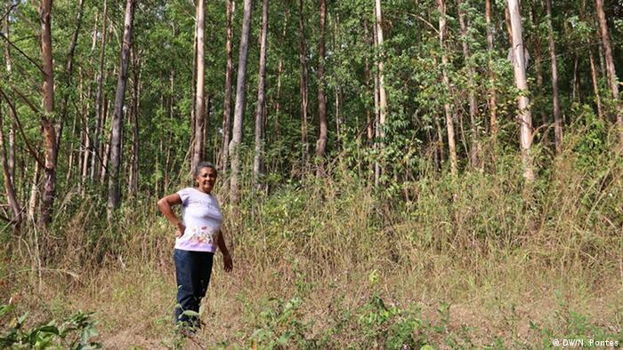 Eunice Conceicao Costa standing in front of a eucalyptus plantation (Photo: Nádia Pontes)