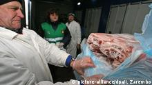 Staff inspecting meat delivered from Germany at the inspection terminal of the Border veterinary control section of Federal Service for Veterinary and Phytosanitary Surveillance, Kaliningrad region. Photo: Igor Zarembo/Ria Nowosti