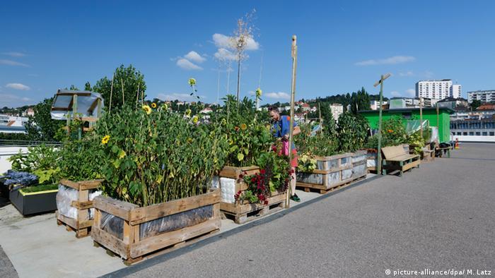 Городская плантация на верхнем уровне многоэтажного гаража в Штутгарте