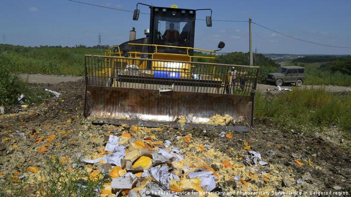 За три роки Росія знищила майже 27 тисяч тонн санкційних продуктів