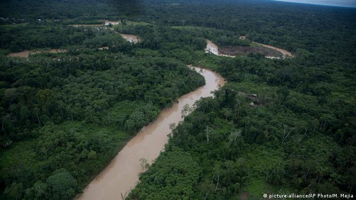 Peru Ashaninka Gebiet Illegale Rodung Regenwald (picture-alliance/AP Photo/M. Mejia)