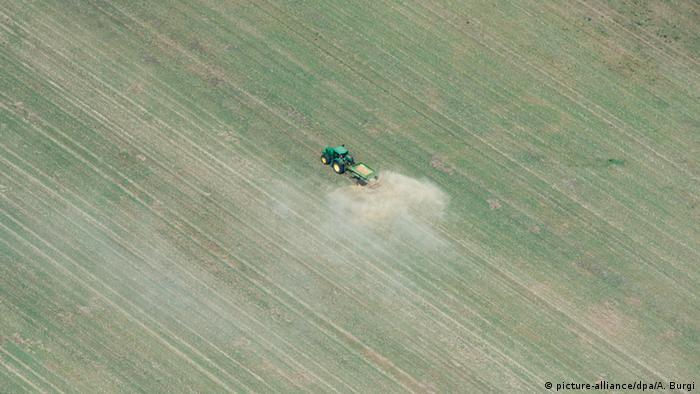 Засуха на полях