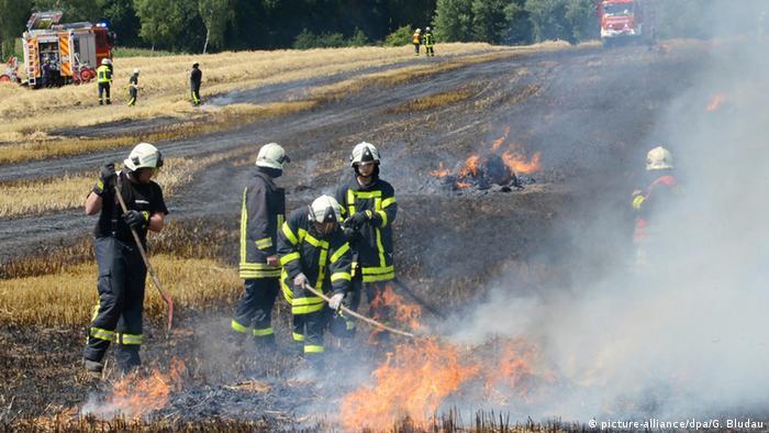 Пожарные тушат пожар в поле