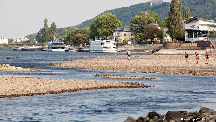 Отмели на берегу Рейна