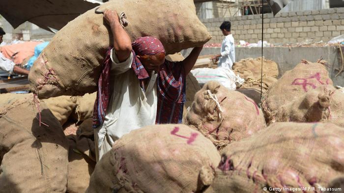 Pakistan Wirtschaft Zwiebeln (Getty Images/AFP/R. Tabassum)