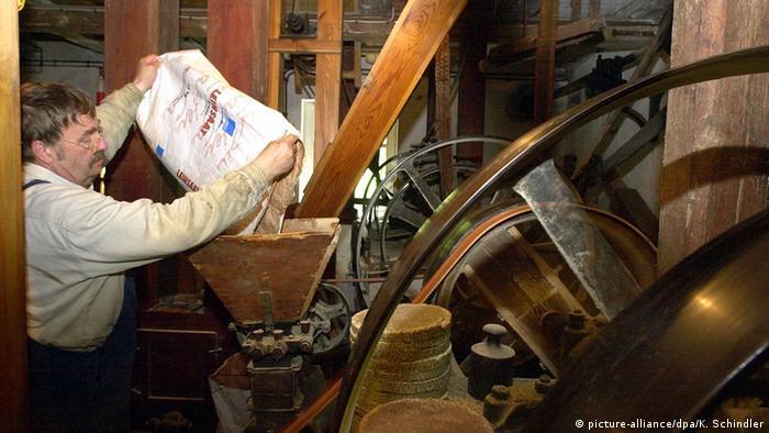 Традиционная маслобойная мельница в Лаузице
