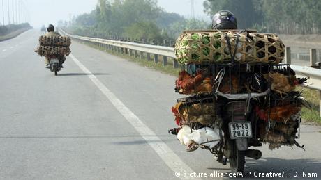Vietnam Mofa auf Straße (Foto: picture alliance/AFP Creative/H. D)