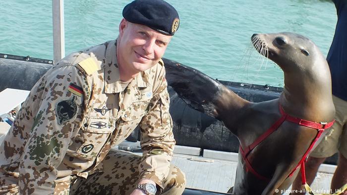 Bildergalerie Tiere im Krieg Seelöwe Jack Seeübung USA Deutschland