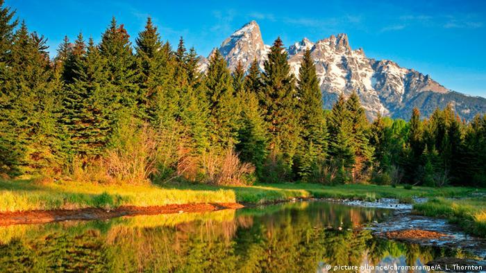 Оазис край Скалистите планини
