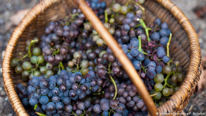 Красный виноград в плетеной корзине