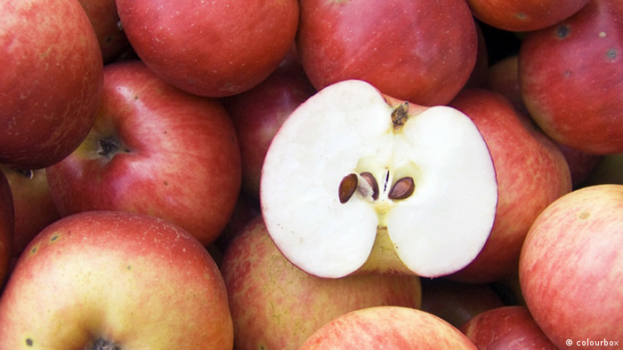03.09.2015 DW FIT & GESUND Apfel