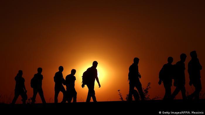 Сирийские беженцы пытаются пешком перейти границу Сербии с Венгрией.