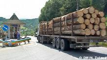 Bild: DW/Natalia Zotova Auf den Bildern sind Holztransporter in Transkarpatien zu sehen. 09/2015