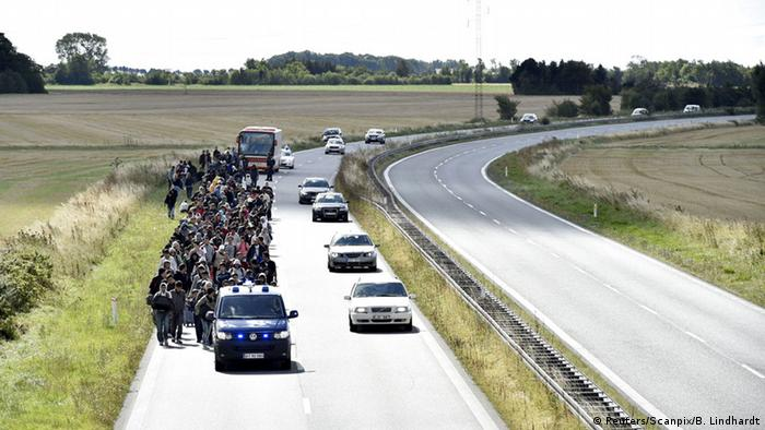 Refugees walk along a Danish motorway on their way to Sweden