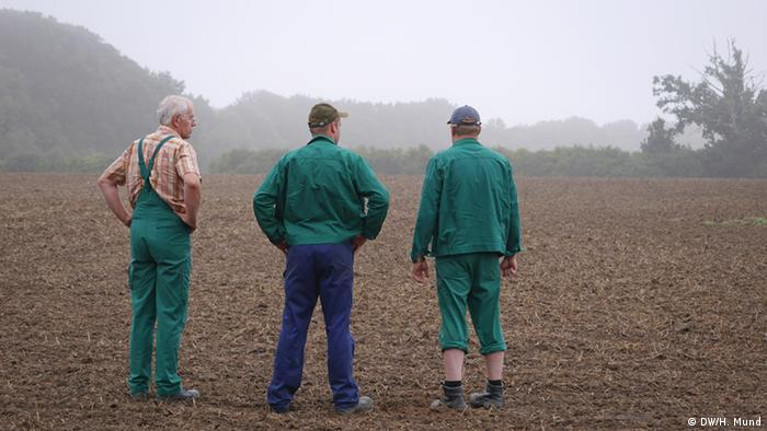 Farmers in a cooperative in Germany (DW/H. Mund)