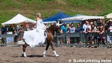 Pferdemarkt Cranger Kirmes 4 - Ingo Thran © Stadtmarketing Herne GmbH.jpg