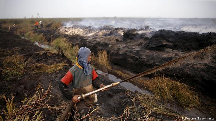Indonesien Brennende Palmöl-Plantagen