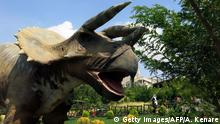 A dinosaur replica is seen at Tehran's Jurassic park in the western neighbourhood of Saadat Abad on September 10, 2015. The dinosaur park, which opened in 2014 and displays twenty eight life sized dinosaur replicas, is the first of its kind in Iran. AFP PHOTO / ATTA KENARE (Photo credit should read ATTA KENARE/AFP/Getty Images)