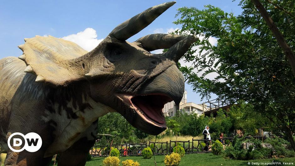اكتشاف حيوان متوحش عتيق يشبه الديناصورات منوعات نافذة Dw عربية على حياة المشاهير والأحداث الطريفة Dw 06 02 2016