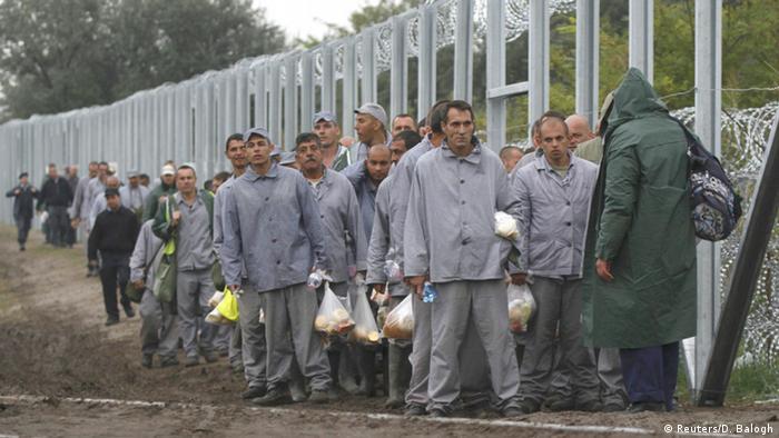 مجارستان با به کارگرفتن گروهی اززندانیان این کشور مرز خود با صربستان را حصار کشیده است
