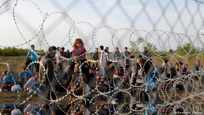 Migrants wait on the Serbian side of the border with Hungary in Assotthalom in September, 2015. (Reuters/L. Balogh)