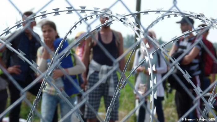 Ungarisch-serbische Grenze in Röszke (foto: DW)