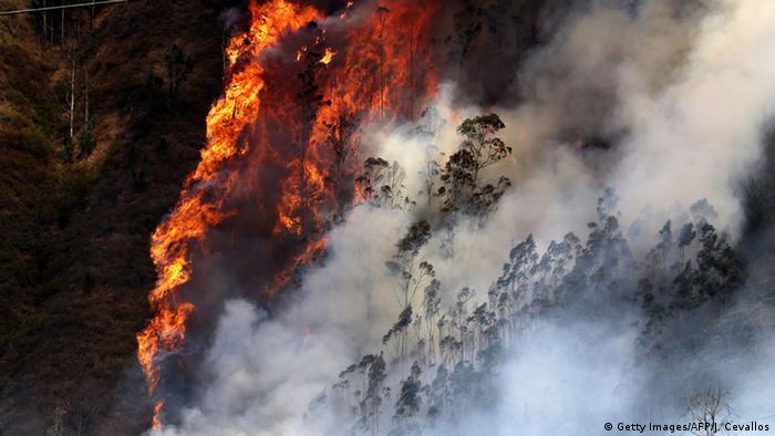 Incendios forestales en Ecuador.